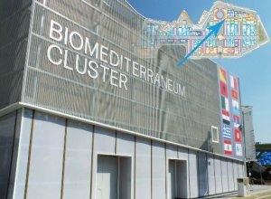 biomediterraneum_cluster_N