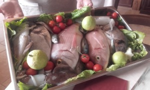 sfizi pesci
