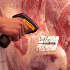 scan-carne