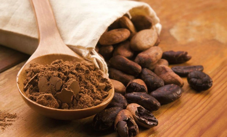 Cacao: il buono che fa bene